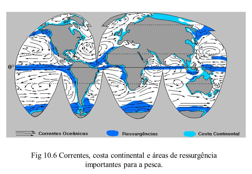 Fig 10.6 Correntes, costa continental e áreas de ressurgência importantes para a pesca.