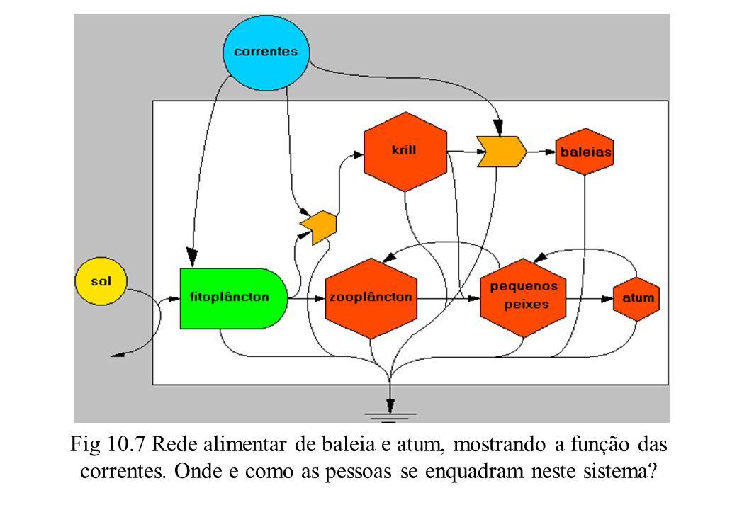 Fig 10.7 Rede alimentar de baleia e atum, mostrando a função das correntes.