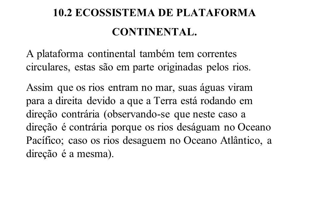 10.2 ECOSSISTEMA DE PLATAFORMA CONTINENTAL.