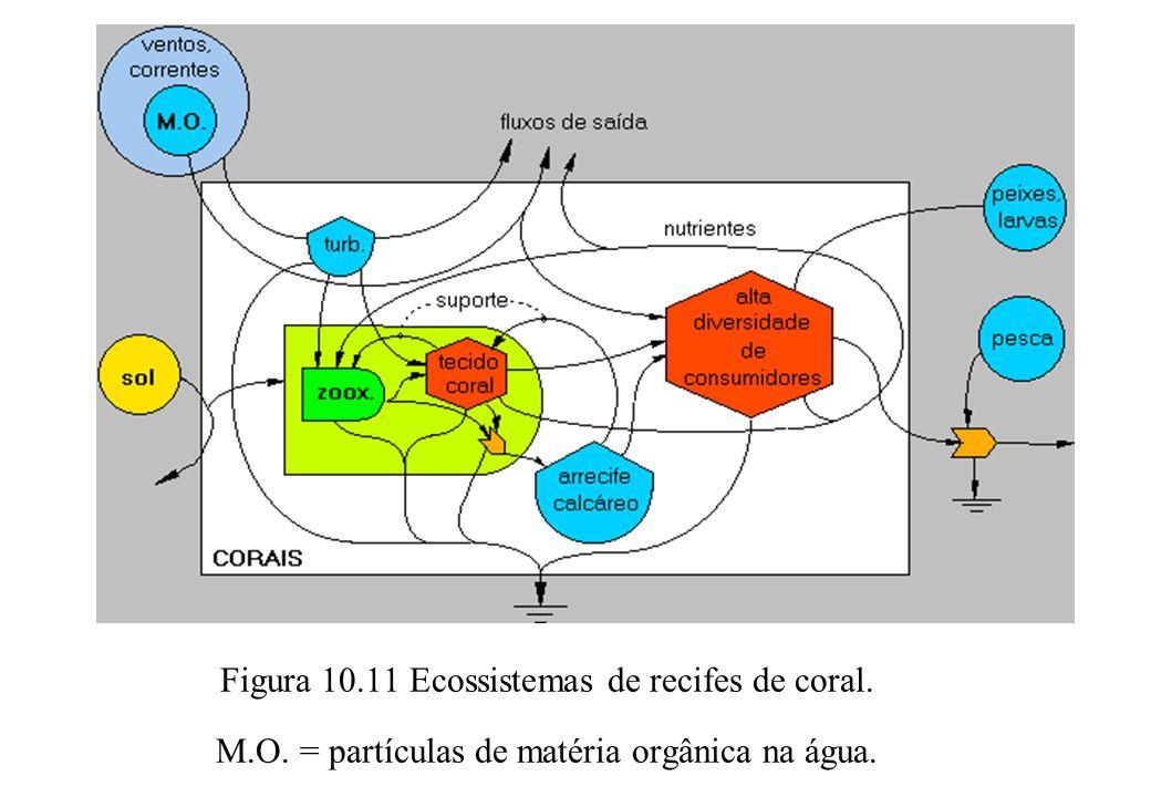 Figura 10. 11 Ecossistemas de recifes de coral. M. O