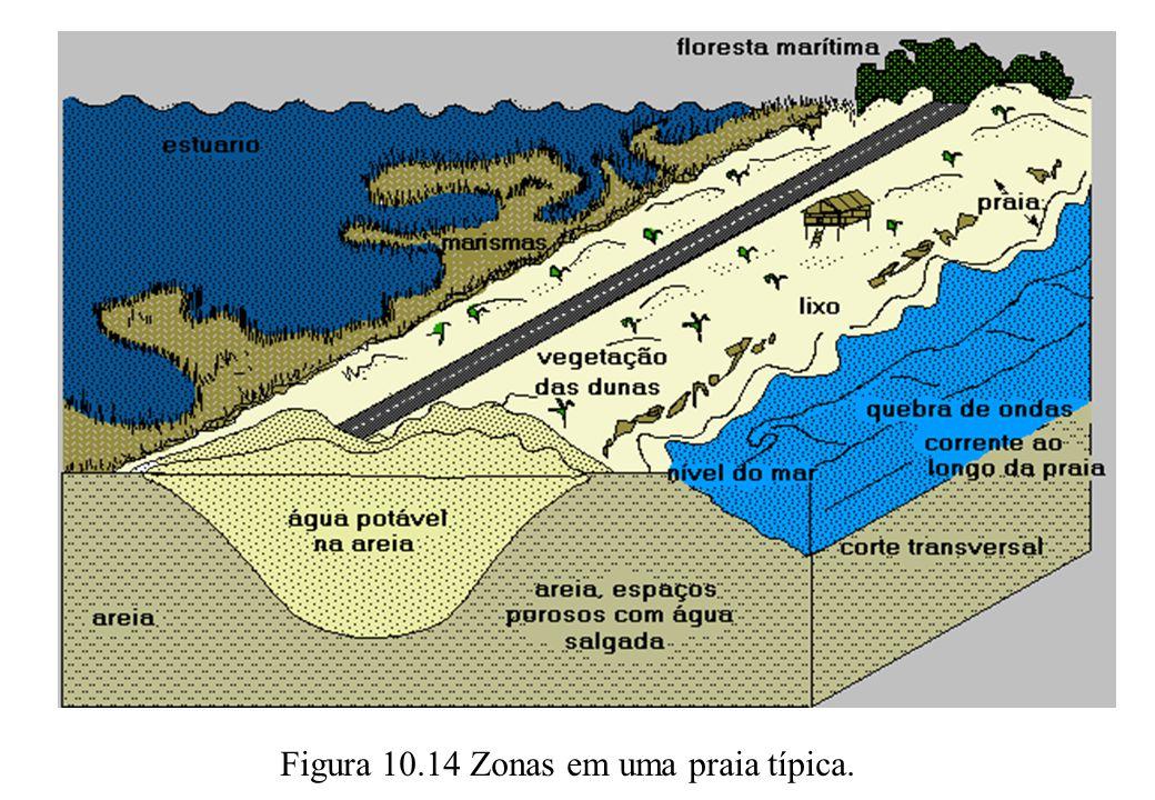 Figura 10.14 Zonas em uma praia típica.