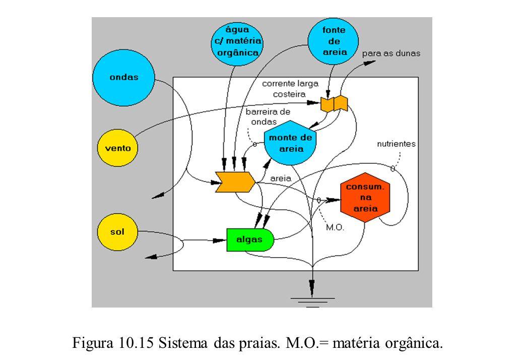 Figura 10.15 Sistema das praias. M.O.= matéria orgânica.