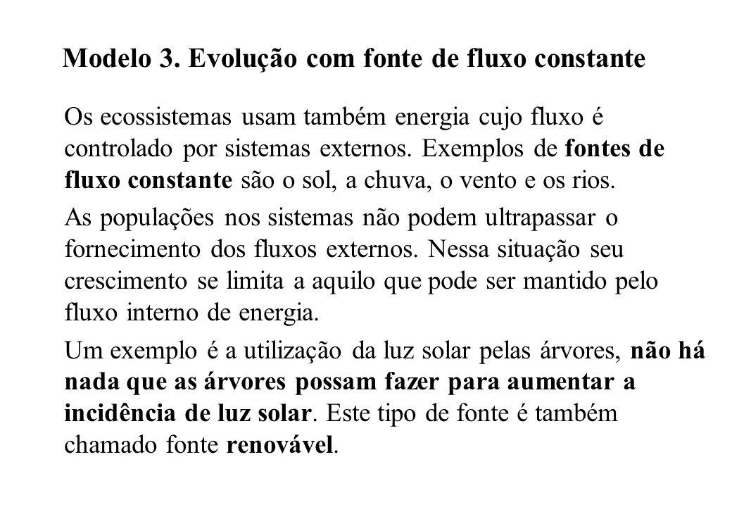 Modelo 3. Evolução com fonte de fluxo constante