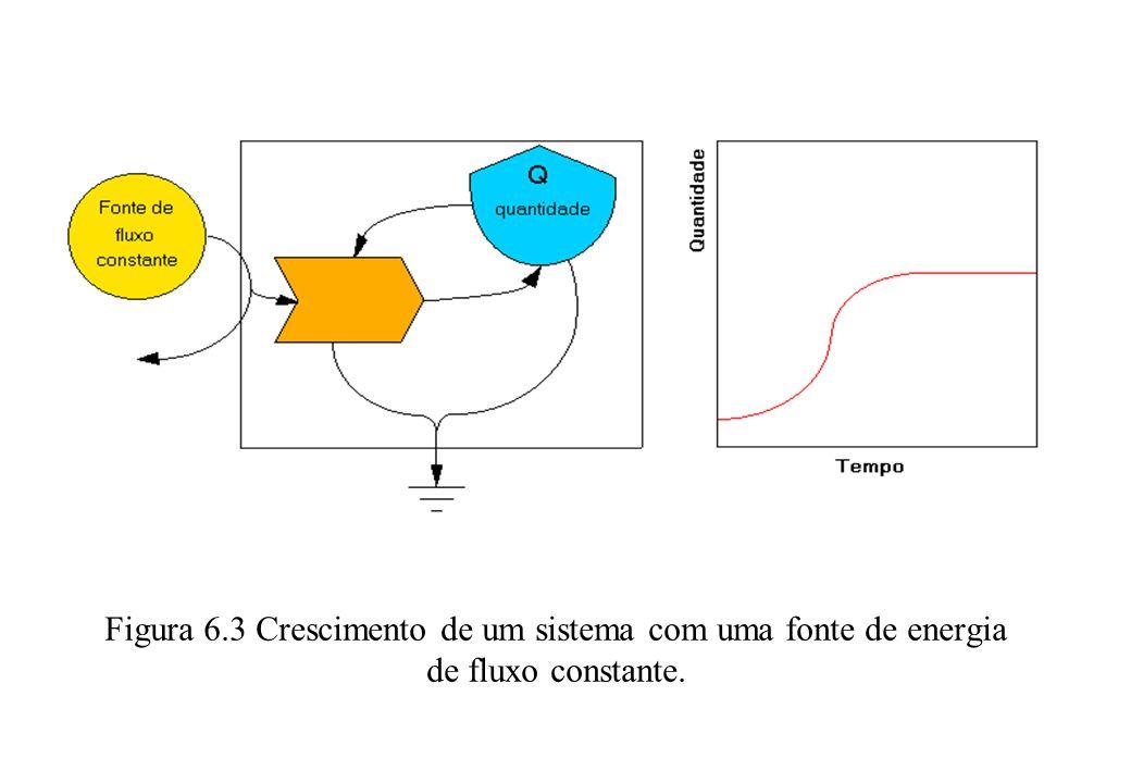 . Figura 6.3 Crescimento de um sistema com uma fonte de energia de fluxo constante.