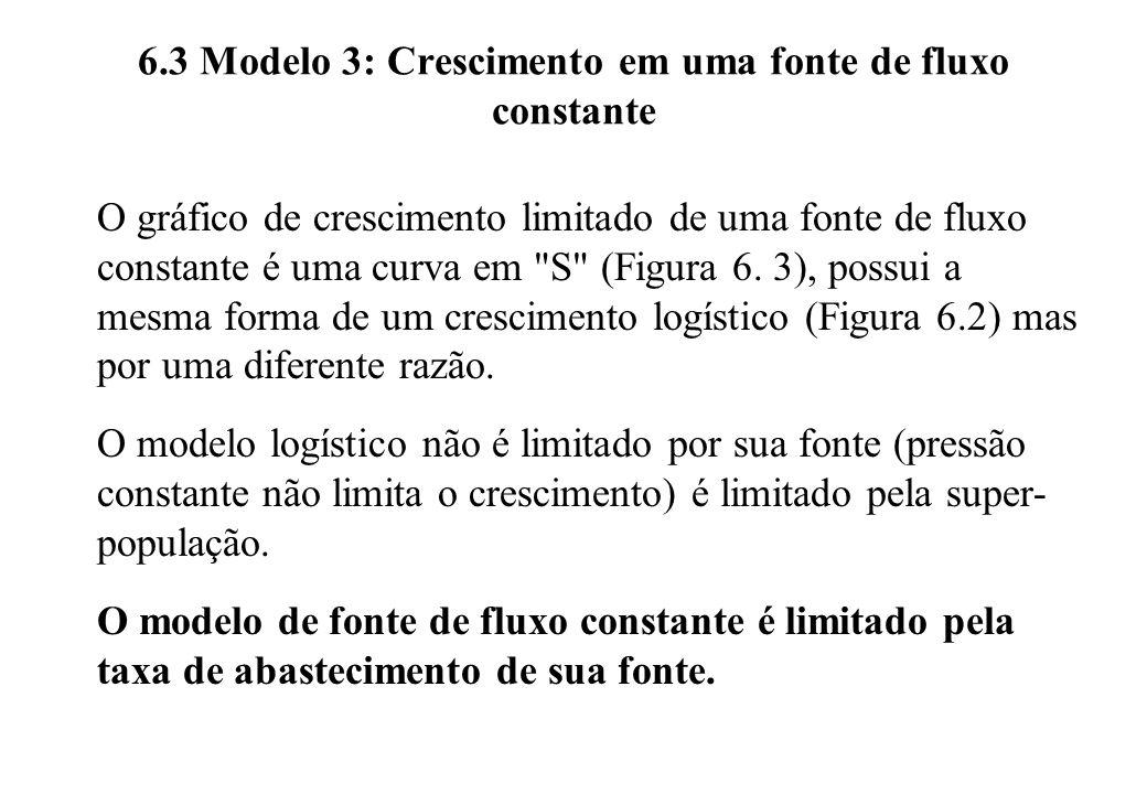 6.3 Modelo 3: Crescimento em uma fonte de fluxo constante