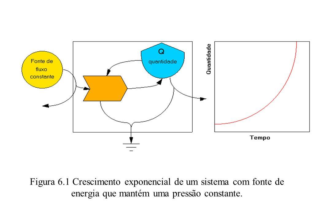Figura 6.1 Crescimento exponencial de um sistema com fonte de energia que mantém uma pressão constante.