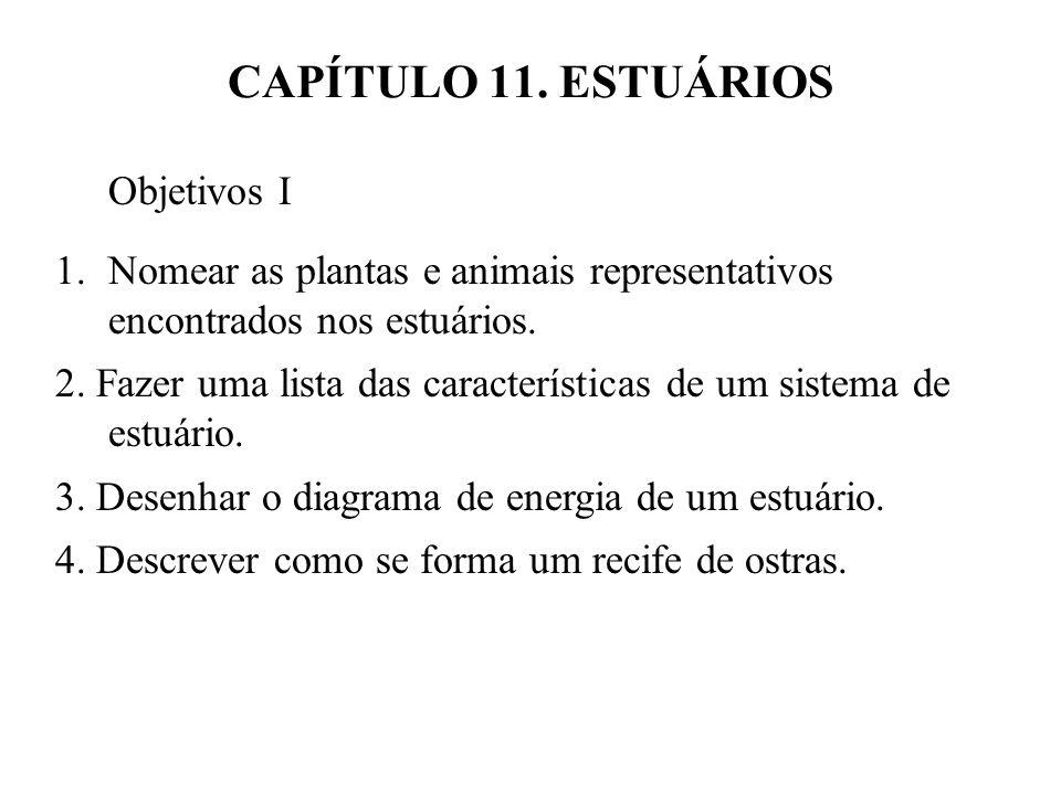 CAPÍTULO 11. ESTUÁRIOS Objetivos I