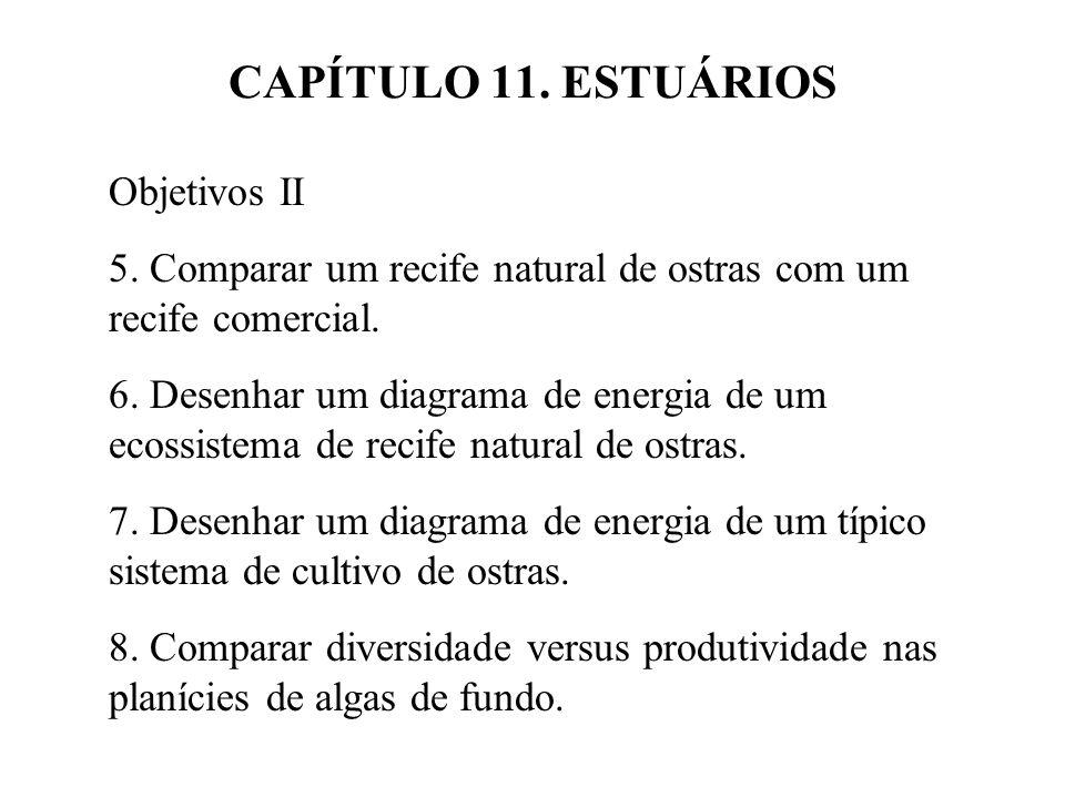 CAPÍTULO 11. ESTUÁRIOS Objetivos II