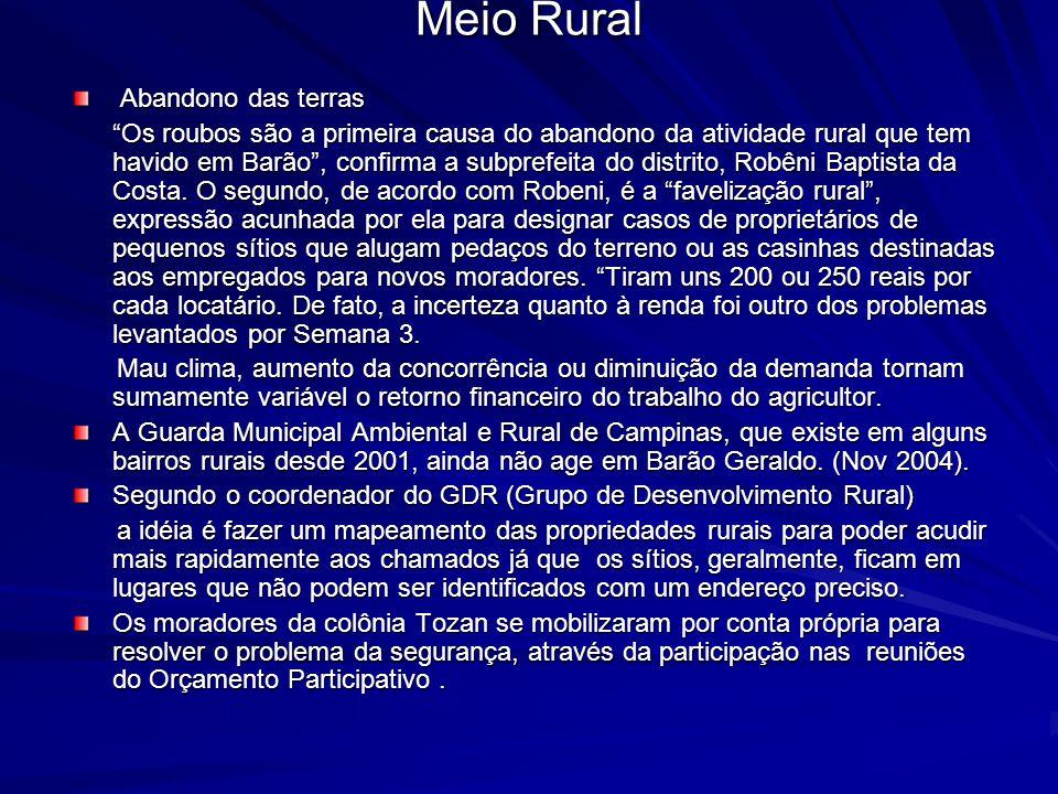 Meio Rural Abandono das terras