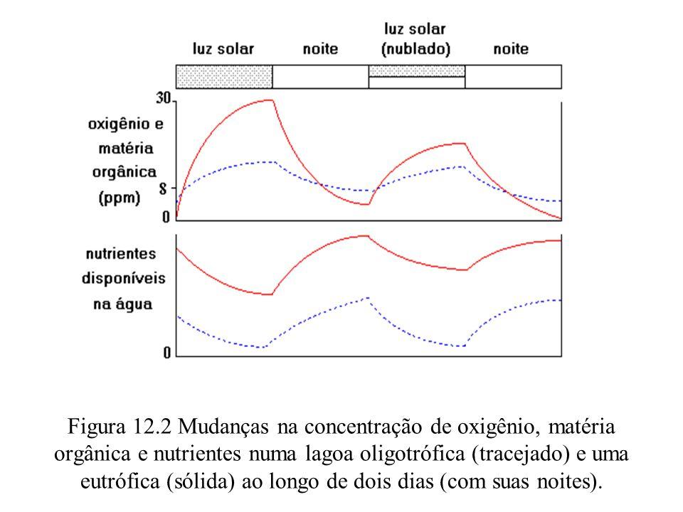 Figura 12.2 Mudanças na concentração de oxigênio, matéria orgânica e nutrientes numa lagoa oligotrófica (tracejado) e uma eutrófica (sólida) ao longo de dois dias (com suas noites).