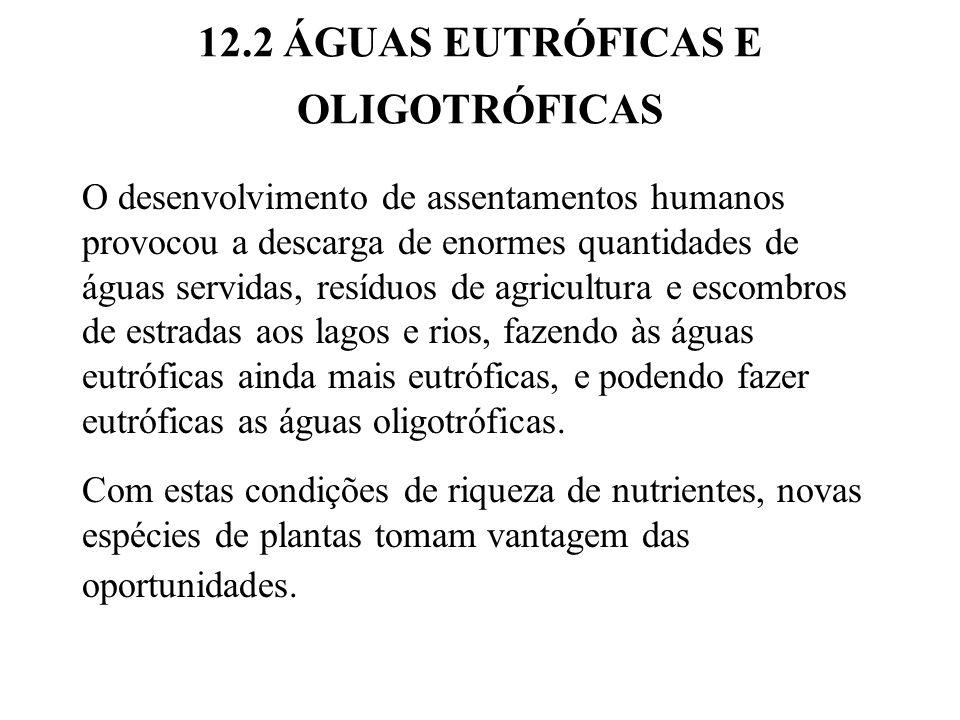 12.2 ÁGUAS EUTRÓFICAS E OLIGOTRÓFICAS