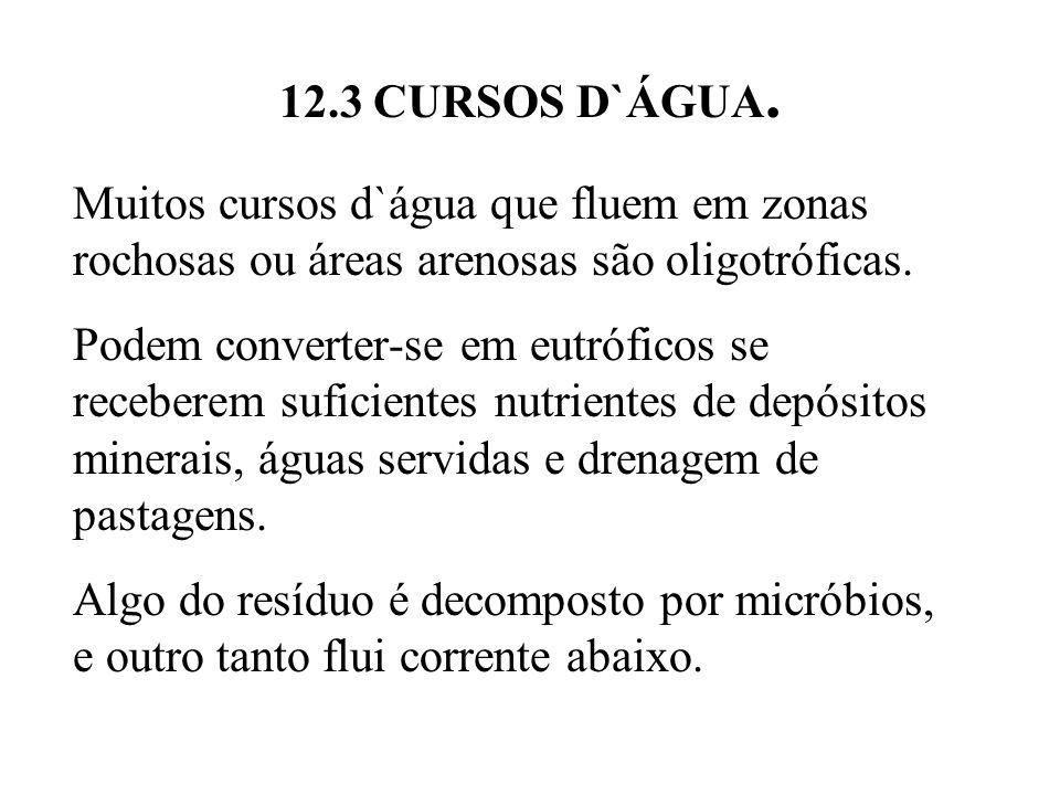 12.3 CURSOS D`ÁGUA. Muitos cursos d`água que fluem em zonas rochosas ou áreas arenosas são oligotróficas.