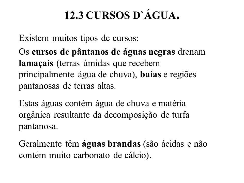 12.3 CURSOS D`ÁGUA. Existem muitos tipos de cursos: