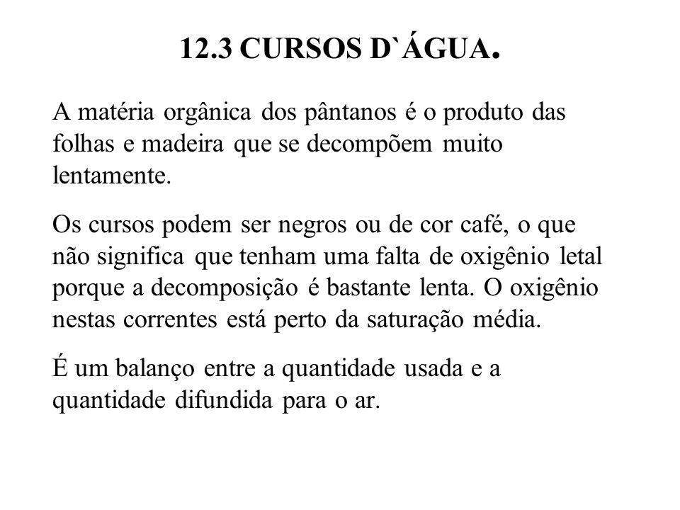 12.3 CURSOS D`ÁGUA. A matéria orgânica dos pântanos é o produto das folhas e madeira que se decompõem muito lentamente.