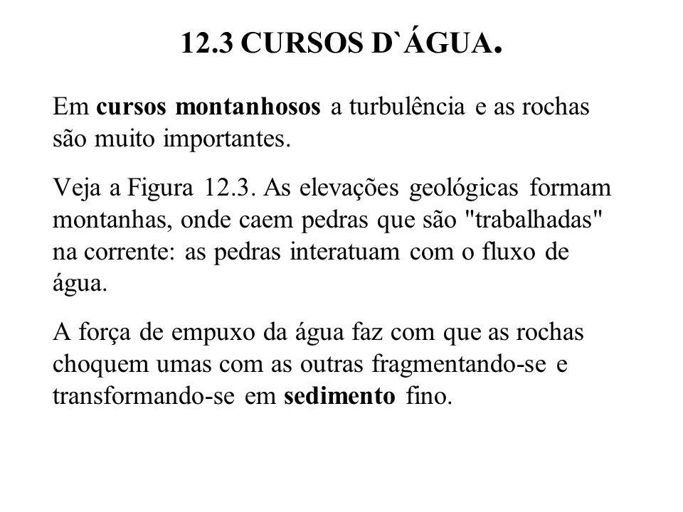 12.3 CURSOS D`ÁGUA. Em cursos montanhosos a turbulência e as rochas são muito importantes.