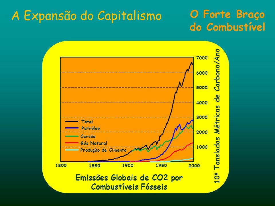 A Expansão do Capitalismo