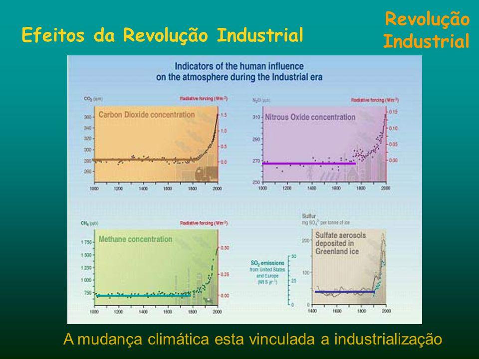Efeitos da Revolução Industrial