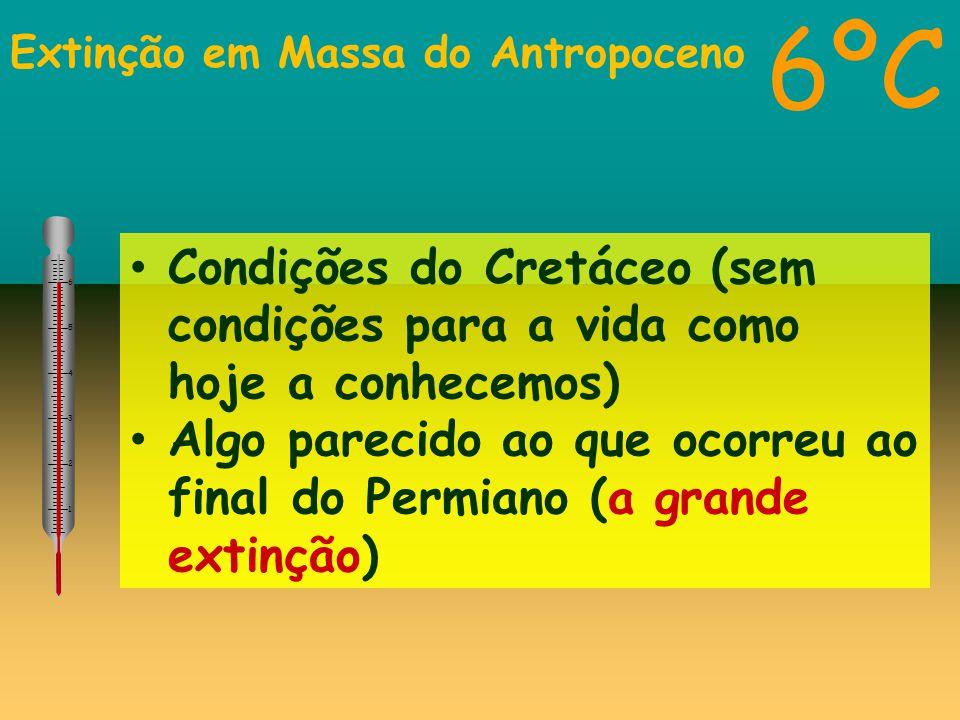 Extinção em Massa do Antropoceno