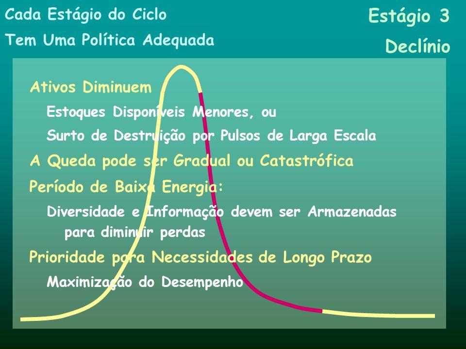 Estágio 3 Declínio Cada Estágio do Ciclo Tem Uma Política Adequada