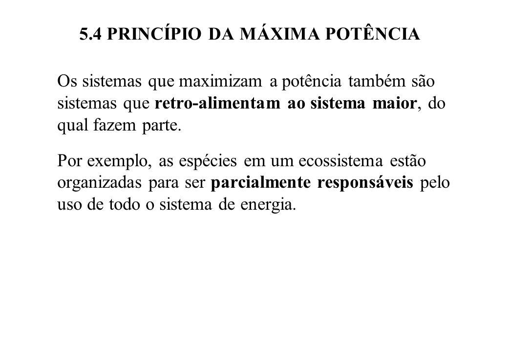 5.4 PRINCÍPIO DA MÁXIMA POTÊNCIA