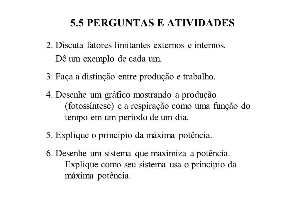 5.5 PERGUNTAS E ATIVIDADES