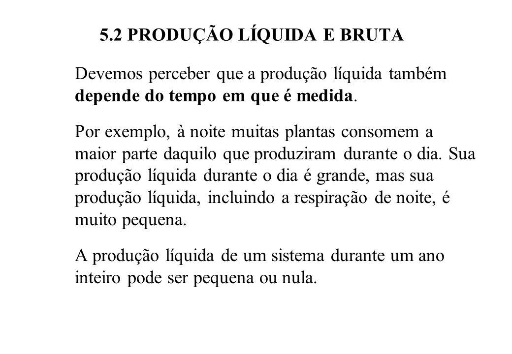5.2 PRODUÇÃO LÍQUIDA E BRUTA