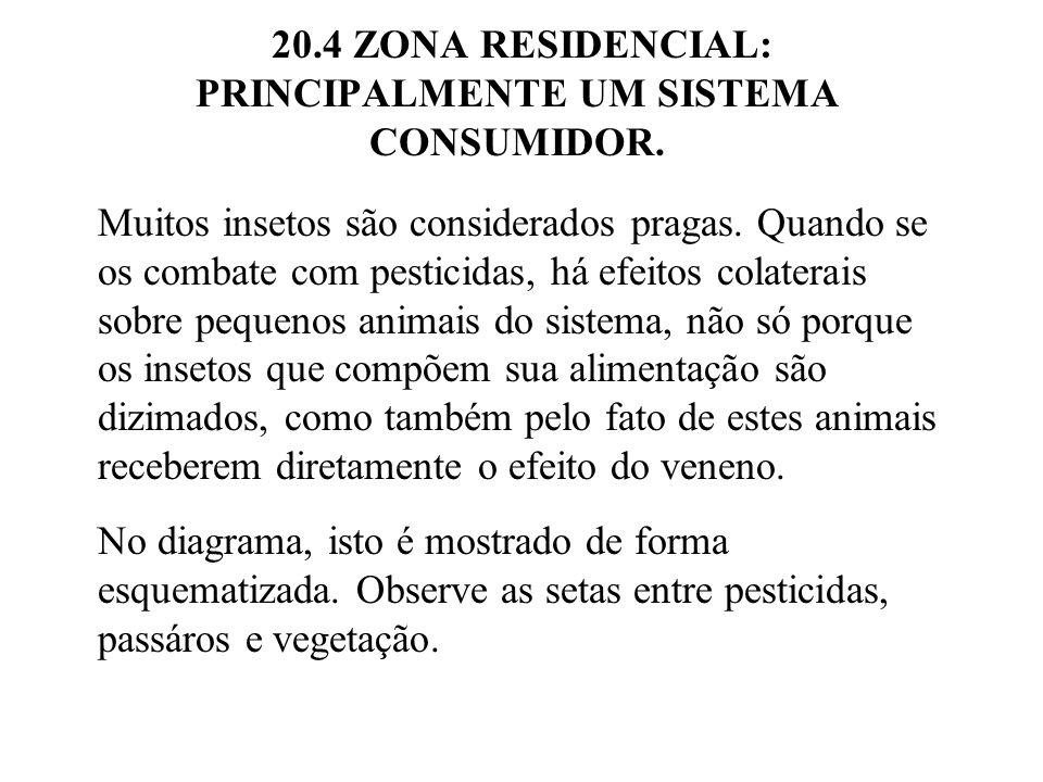 20.4 ZONA RESIDENCIAL: PRINCIPALMENTE UM SISTEMA CONSUMIDOR.