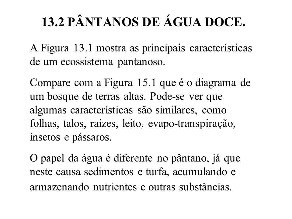 13.2 PÂNTANOS DE ÁGUA DOCE. A Figura 13.1 mostra as principais características de um ecossistema pantanoso.