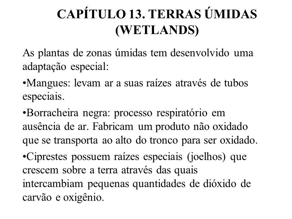 CAPÍTULO 13. TERRAS ÚMIDAS (WETLANDS)