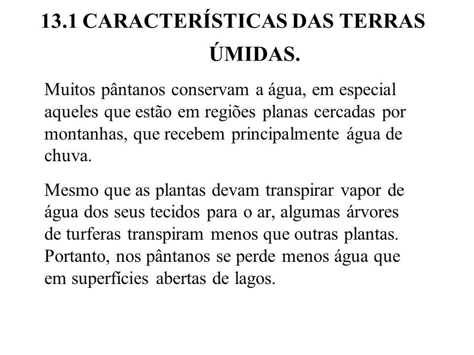 13.1 CARACTERÍSTICAS DAS TERRAS ÚMIDAS.