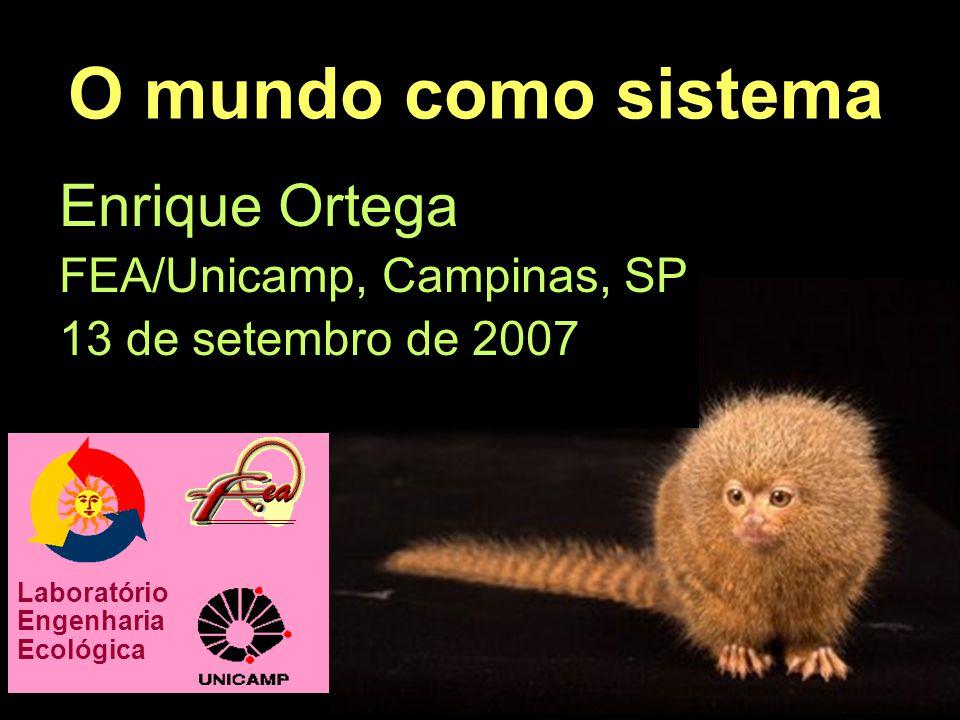 O mundo como sistema Enrique Ortega FEA/Unicamp, Campinas, SP