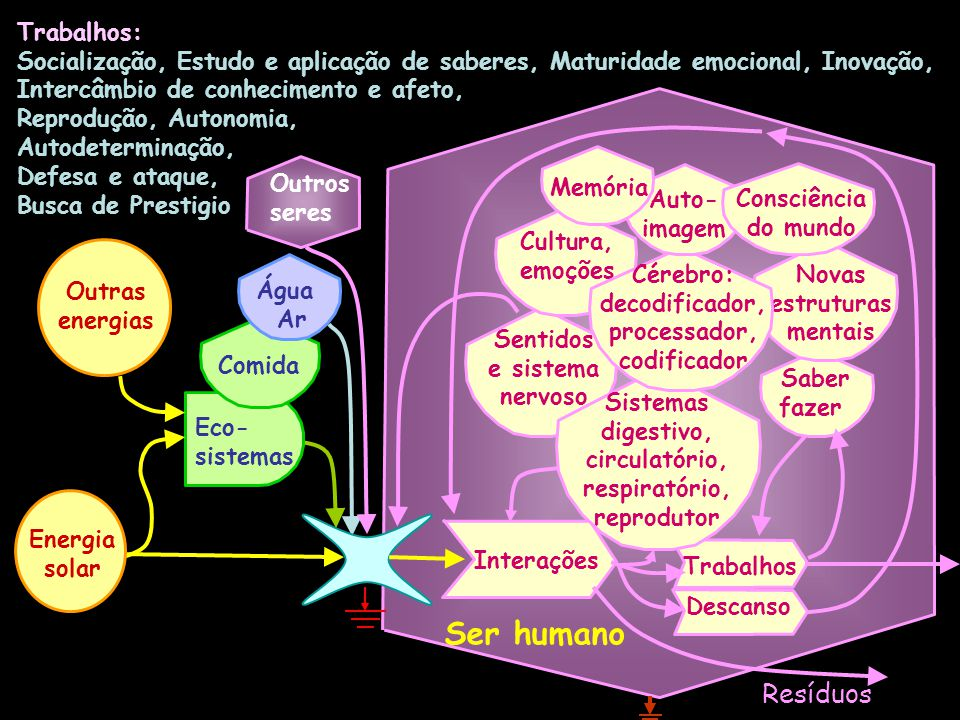 Trabalhos: Socialização, Estudo e aplicação de saberes, Maturidade emocional, Inovação, Intercâmbio de conhecimento e afeto, Reprodução, Autonomia, Autodeterminação, Defesa e ataque, Busca de Prestigio