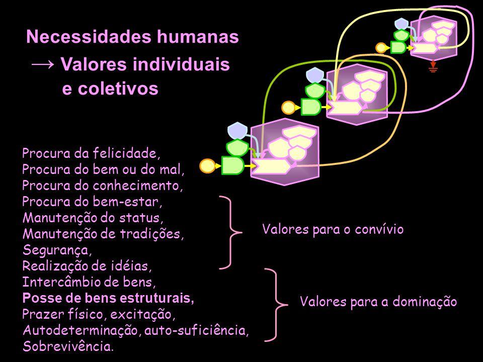 Necessidades humanas → Valores individuais e coletivos