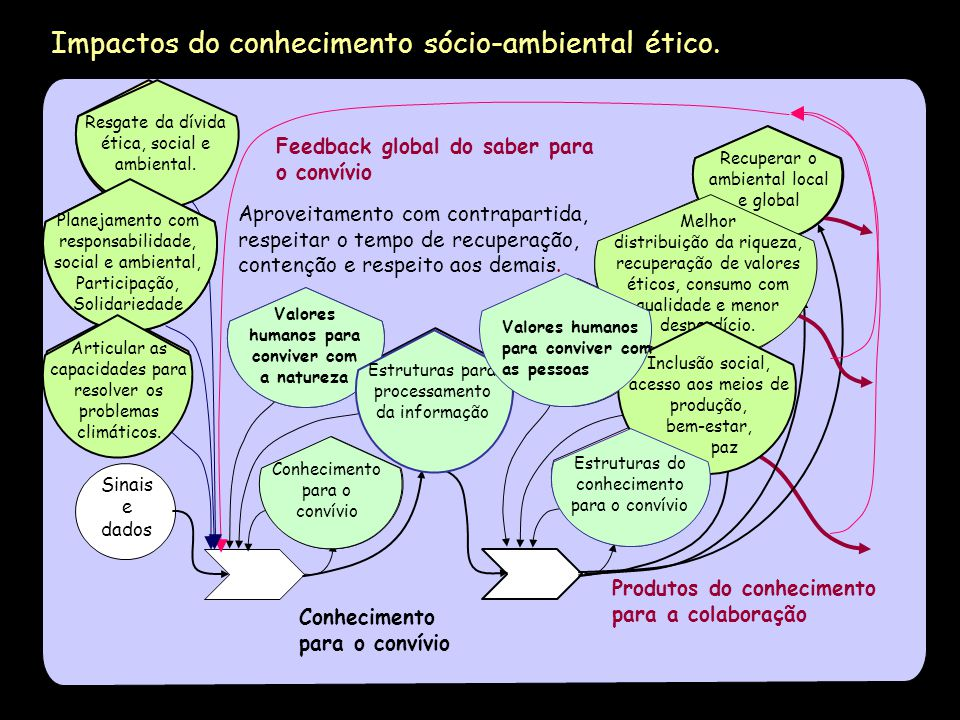 Impactos sociais e ambientais do conhecimento no Capitalismo.