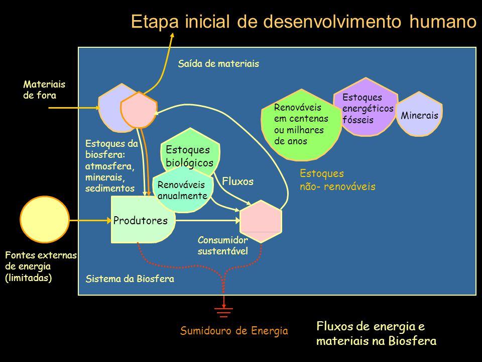 Etapa inicial de desenvolvimento humano