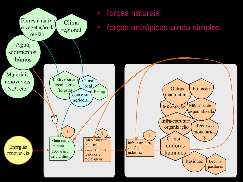 forças naturais forças antrópicas ainda simples