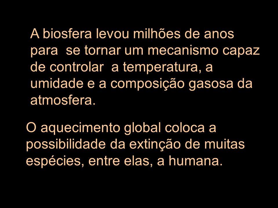 A biosfera levou milhões de anos para se tornar um mecanismo capaz de controlar a temperatura, a umidade e a composição gasosa da atmosfera.