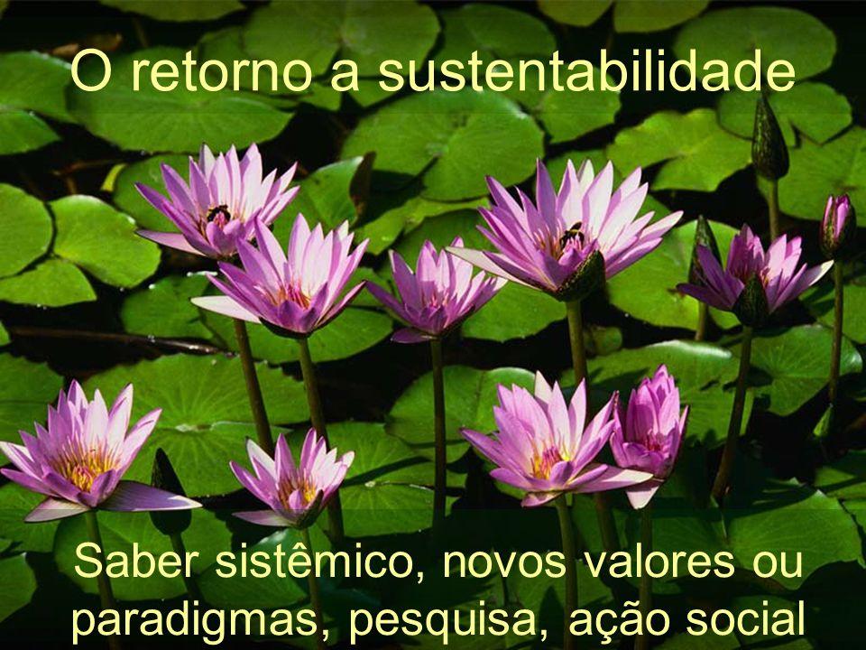 O retorno a sustentabilidade
