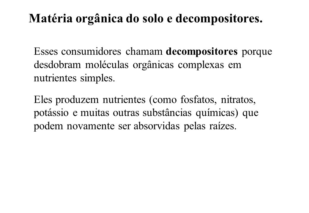 Matéria orgânica do solo e decompositores.