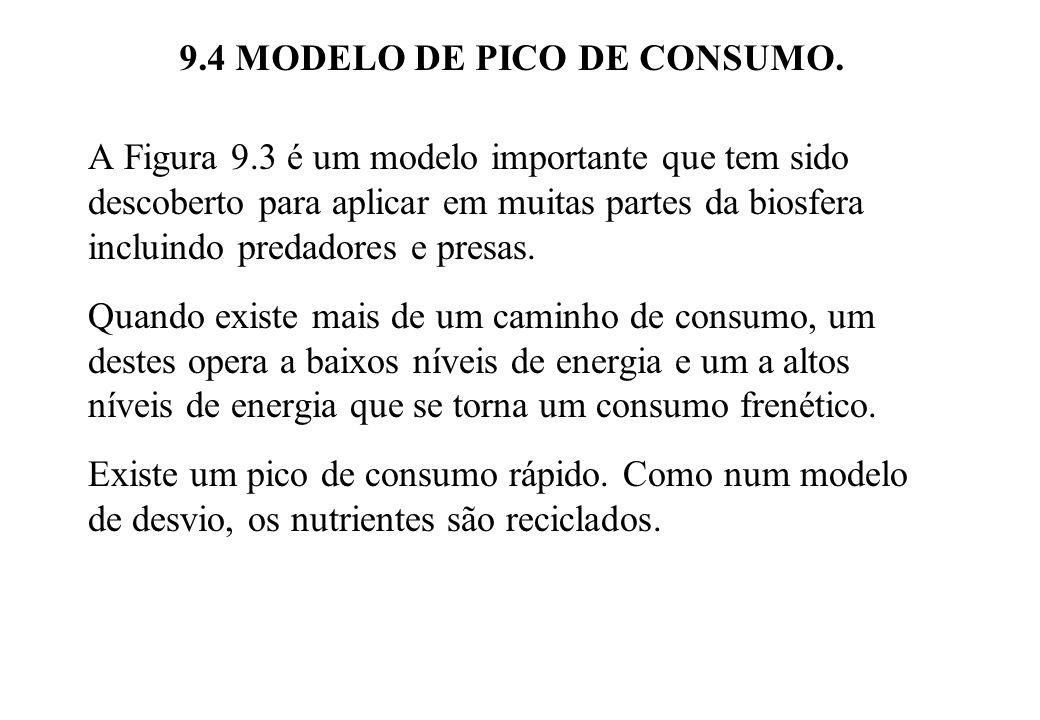9.4 MODELO DE PICO DE CONSUMO.