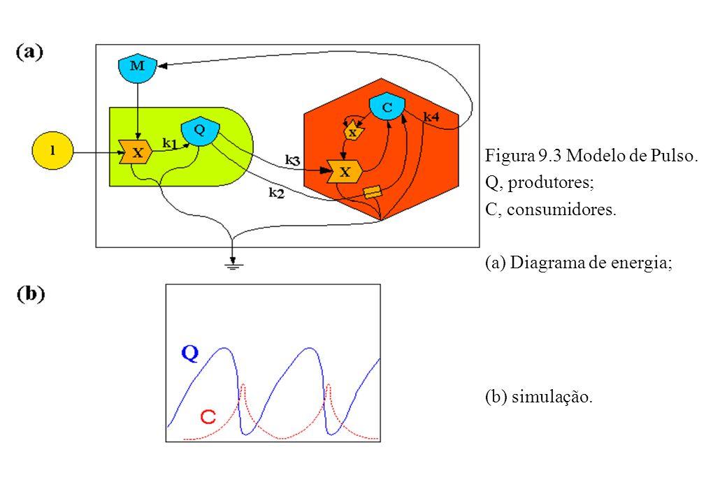 Figura 9.3 Modelo de Pulso. Q, produtores; C, consumidores. (a) Diagrama de energia; (b) simulação.