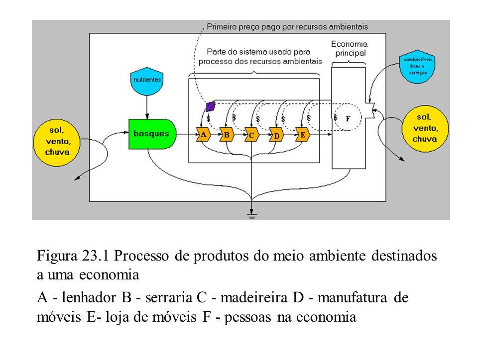 Figura 23.1 Processo de produtos do meio ambiente destinados a uma economia