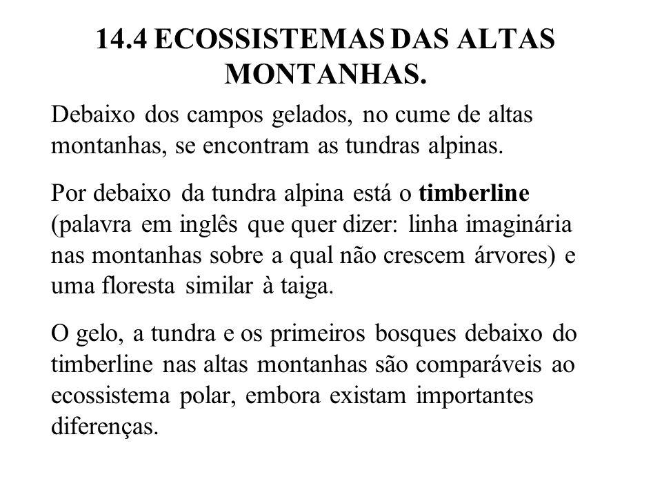14.4 ECOSSISTEMAS DAS ALTAS MONTANHAS.