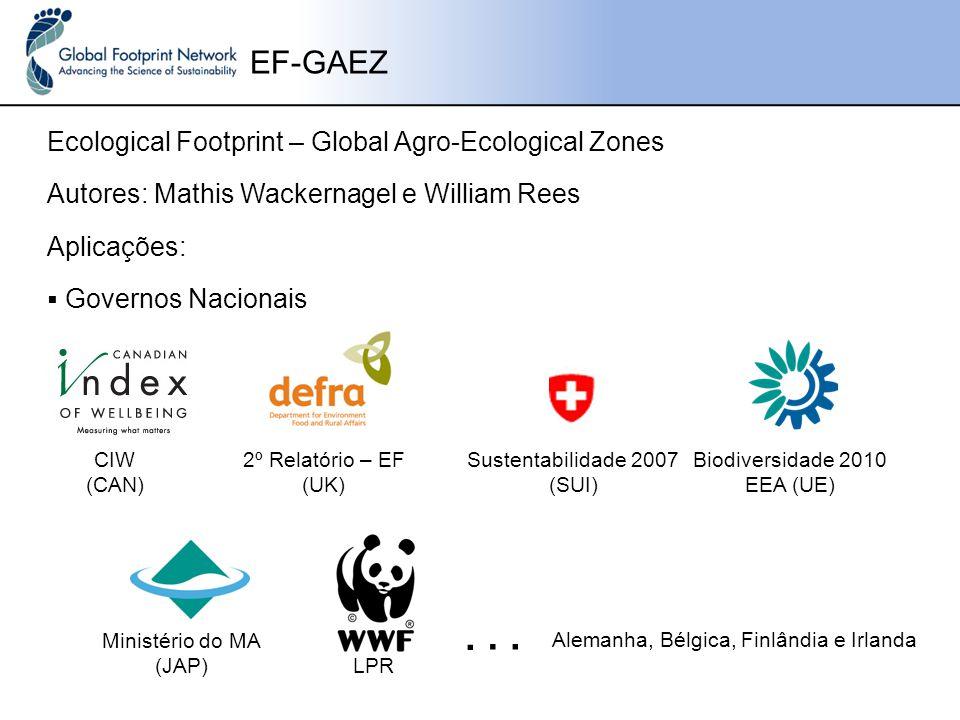 Sustentabilidade 2007 (SUI)