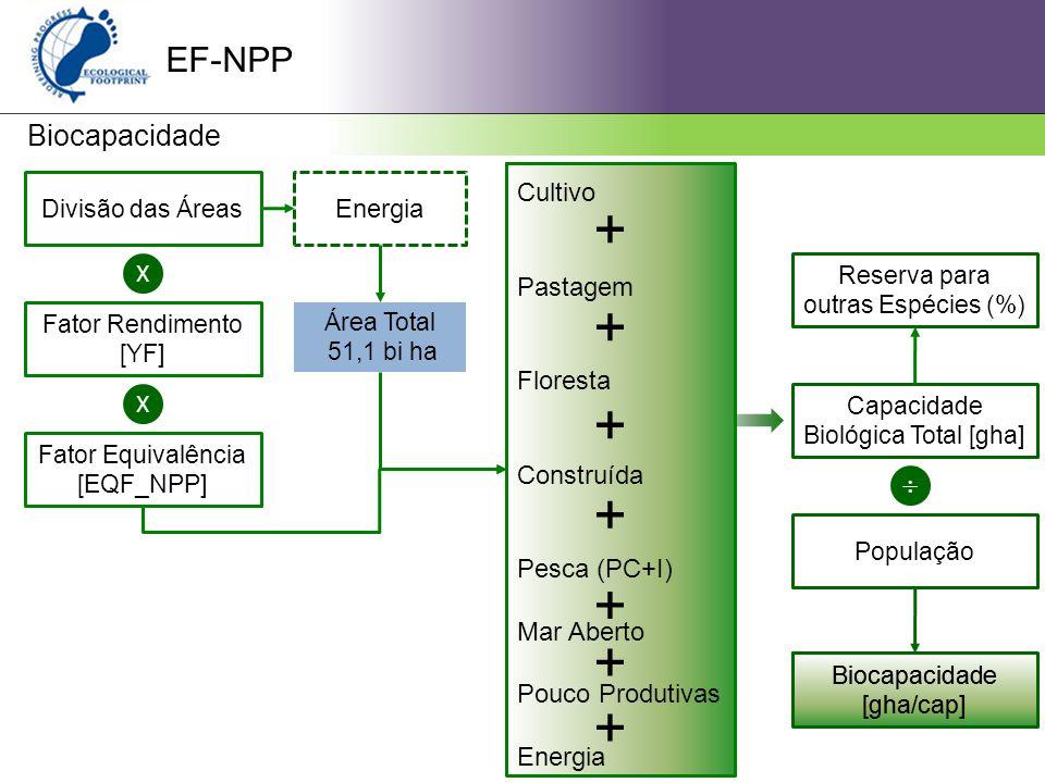 + + + + + + + EF-NPP Biocapacidade  Cultivo Energia Pastagem X