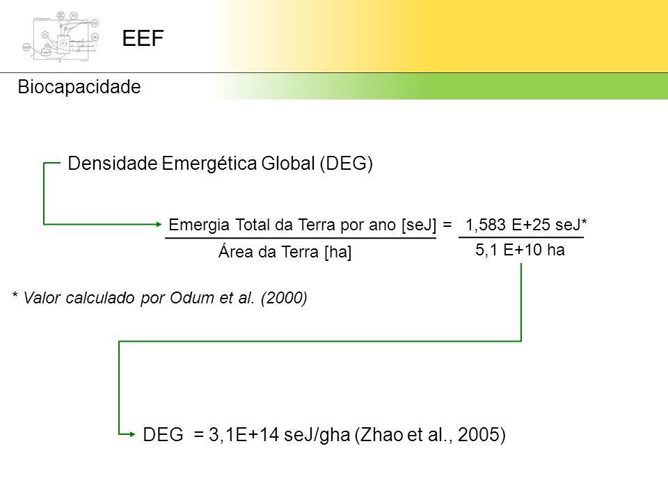 Densidade Emergética Global (DEG)