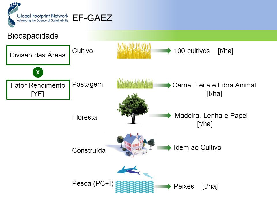 EF-GAEZ Biocapacidade Divisão das Áreas Cultivo Pastagem Floresta