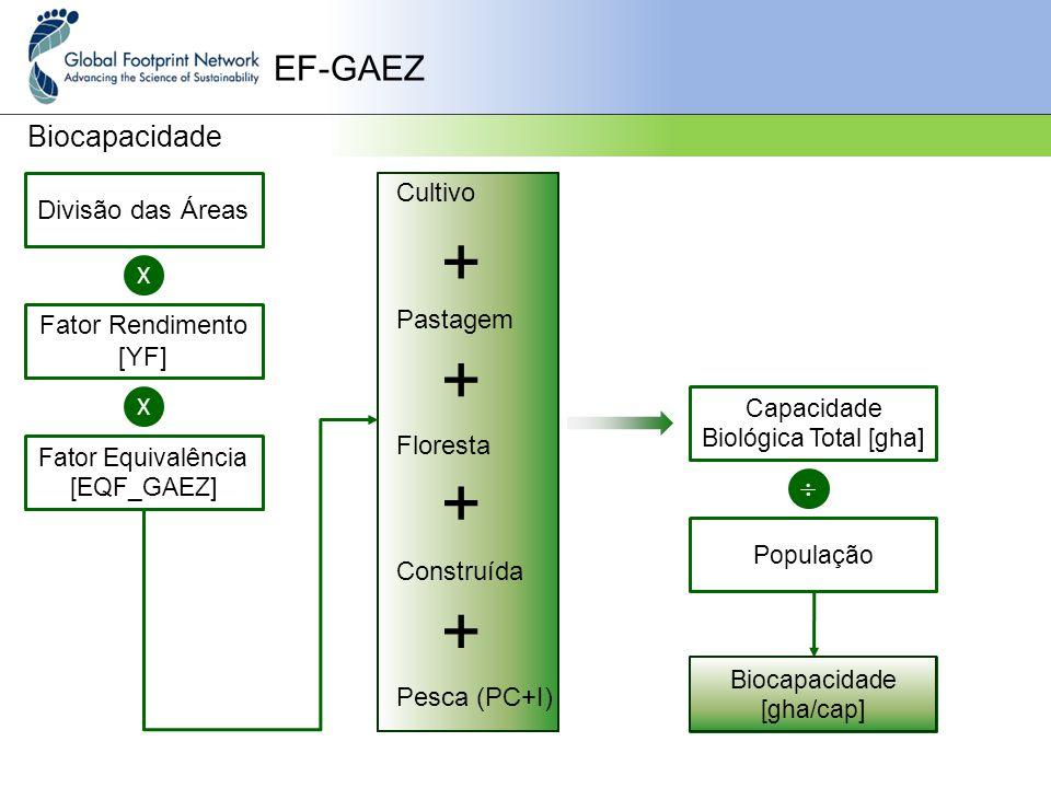 + + + + EF-GAEZ Biocapacidade  Cultivo Divisão das Áreas Pastagem X