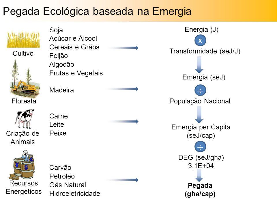 Pegada Ecológica baseada na Emergia