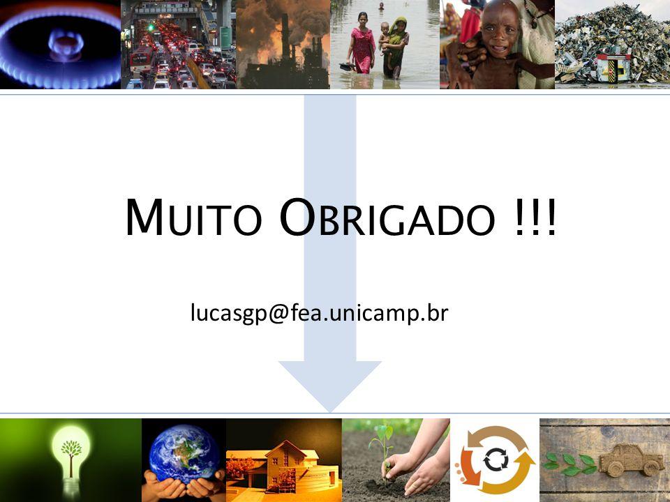 Muito Obrigado !!! lucasgp@fea.unicamp.br